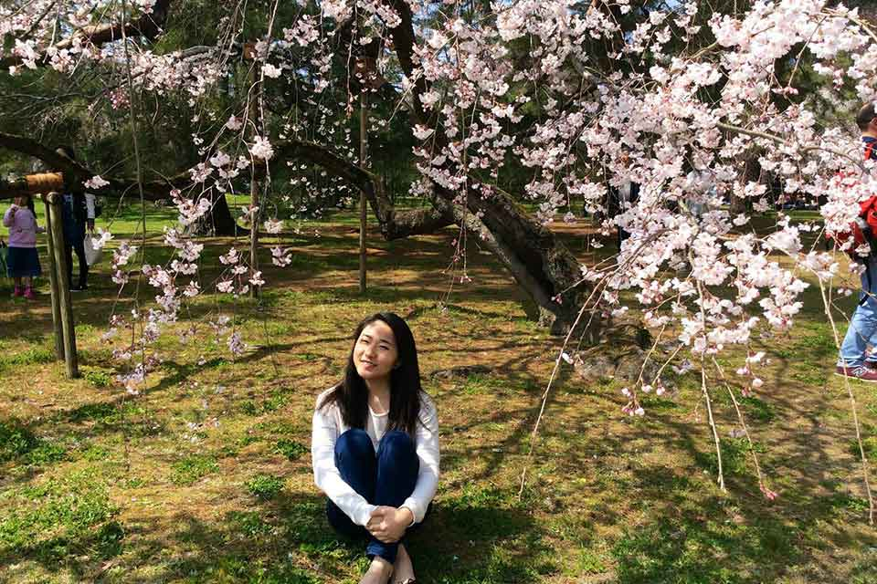 Frances Chang with cherry blossoms