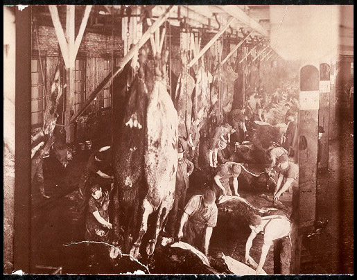meat packing industry early 1900s