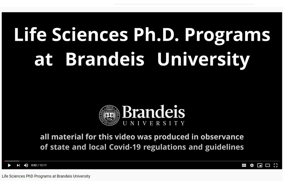 Opening image for graduate students video