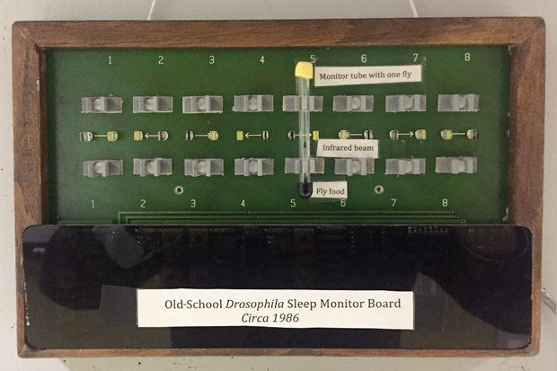 A fruit fly sleep detection machine used in Michael Rosbash and Jeffery Hall's old laboratories.