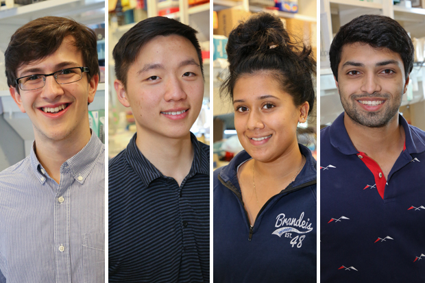 Four undergraduate students who currently work in Michael Rosbash's lab