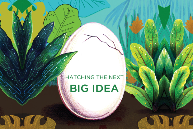 "Illustration of big, hatching egg with the words ""hatching the next big idea"""