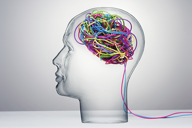 Representation of a brain with colorful wires. Seen through a clear glass dummy head.