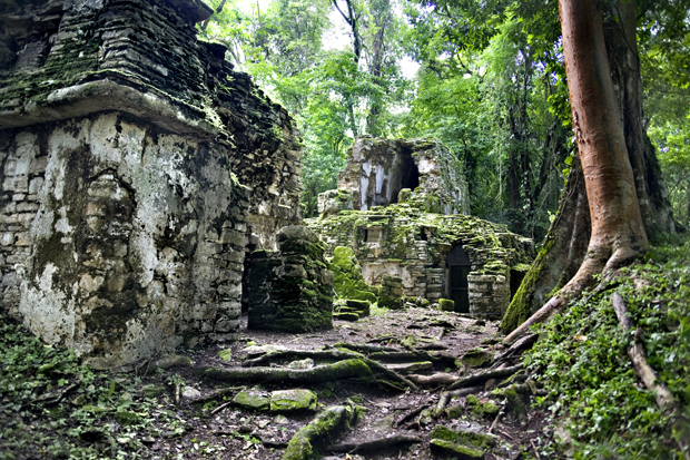Archaeological remains from the ancient Maya empire.