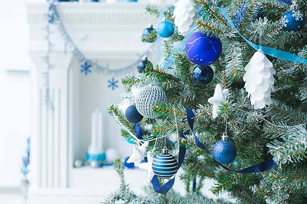 Christmas Trees In Jewish Homes A Brief History Brandeisnow Download 870,497 christmas tree images and stock photos. https www brandeis edu now 2019 december christmas trees jewish homes html