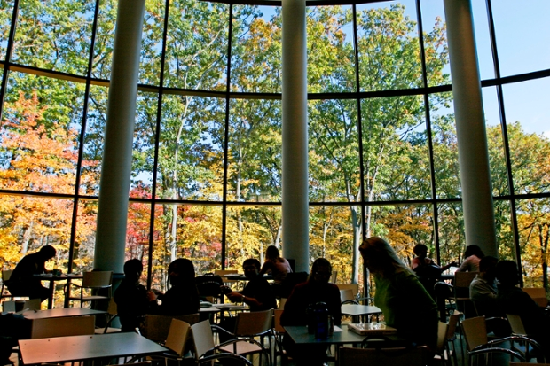 a view of changing autumn leaves from inside a lounge with huge windows at the Brandeis International Business School