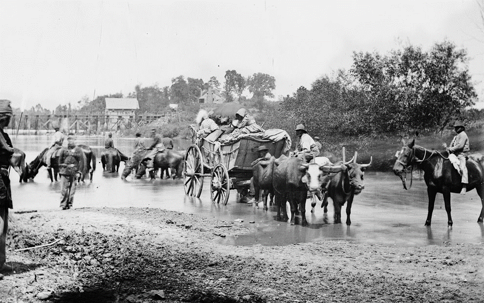 black and white photo of escaping slaves and soldures in a river with a wagon being pulled by oxen