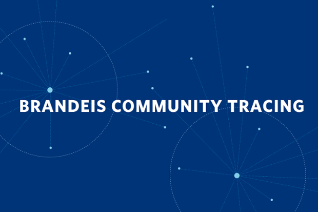 contact tracing at Brandeis logo